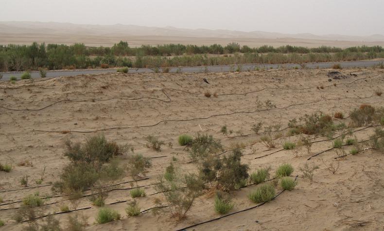 tarim-desert-highway-9