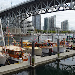 yacht harbor at Granville Island by Matt van Vuuren in Vancouver, British Columbia, Canada