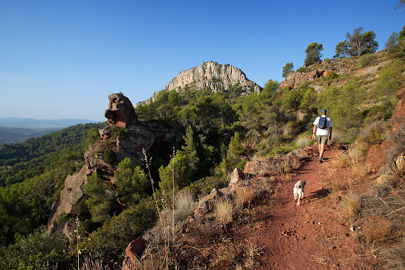 Els Rogerals, camí de Damunt Roca, El Lloar, Priorat, Tarragona