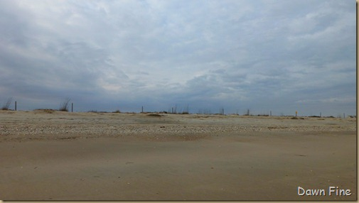 Edisto Beach State Park_020