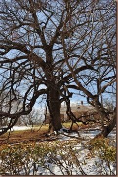 03-27-14 Monticello 03
