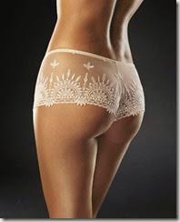 lingerie panties038
