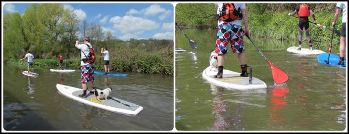 E Dod Paddle Boarding