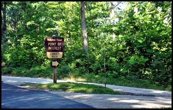 02 - Chimney Top Recreation Area - Right Turn