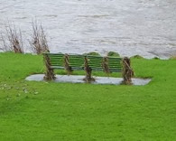bench debris