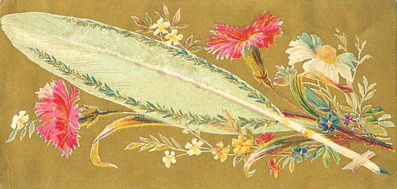 featherflowers