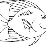 FISH6_BW_thumb.jpg