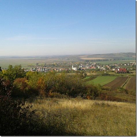 13. Landscape