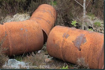 33-rusty-barrels