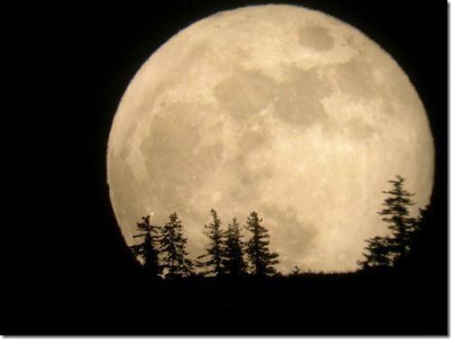 superluna agosto 2014