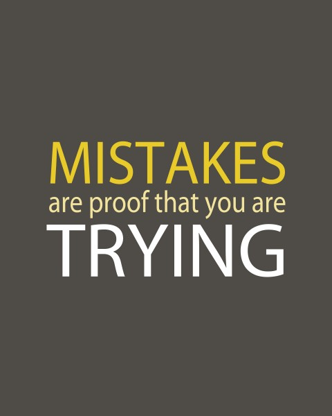 Mistakes are Proof that you are trying1 480x600
