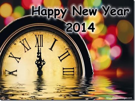 2014 año nuevo (6)