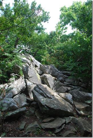 08-24-2011 A Shenandoah NP - Stony Man Hike (19)