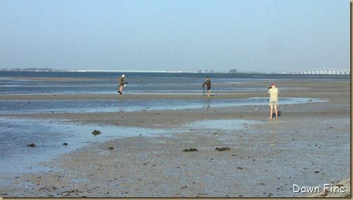 Bunche beach_031