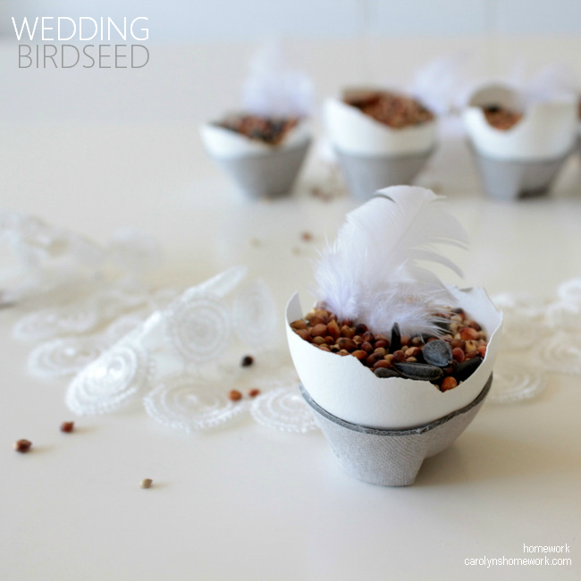 Wedding Birdseed in Eggshells via homework - carolynshomework (7)