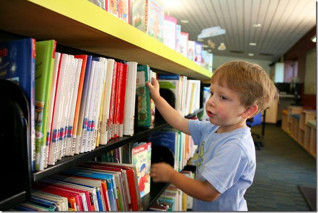 web Nolan library