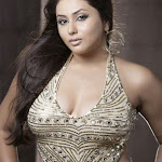 Namitha Hot (5).jpg