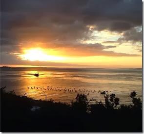 Puerto Montt, Chile Autores 1000 Dias