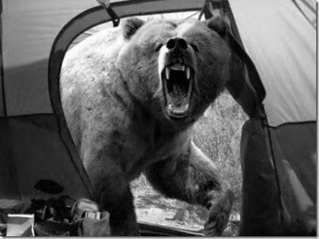 camping-good-bad-005