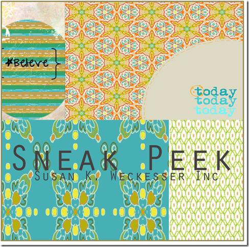 Sneek Peak 1