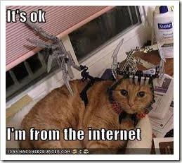 cat_internet