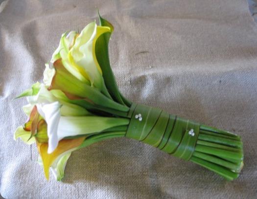 20432_297271630151_1987882_n flora organica designs