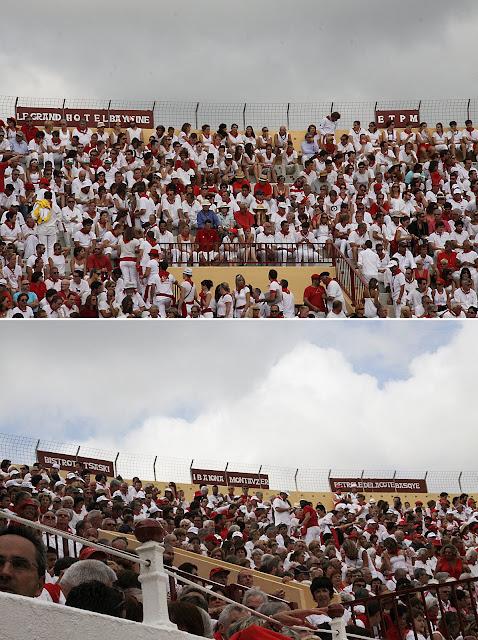 Toros 2012 montage.jpg