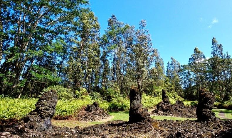 lava-trees-4