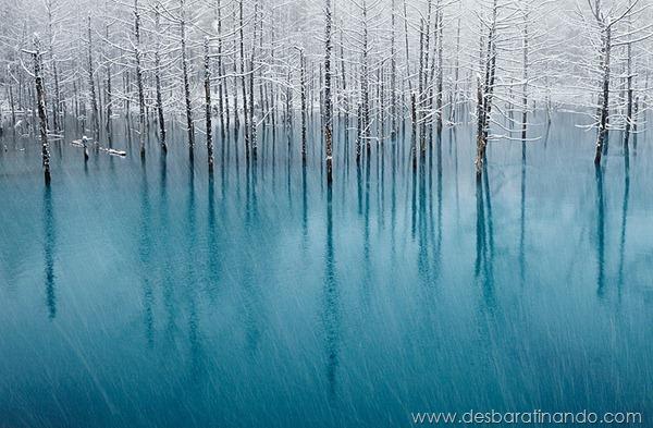 paisagens-de-inverno-winter-landscapes-desbaratinando (3)