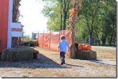 Pumpkin Patch Oct. 2011 005