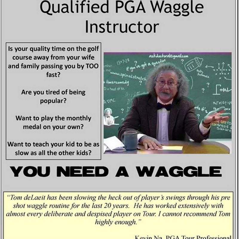Tom deLaeit PGA Qualified Waggle Instructor, Lessons Available