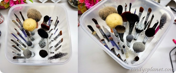 Brush Holder Sephora6-horz