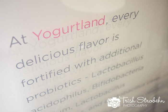 Yogurtland-LV-043