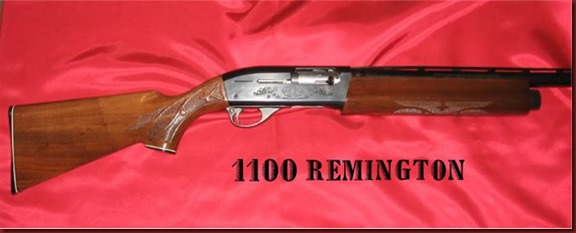 Rem1100 (Small)