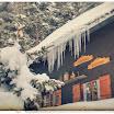 Bavière : Lac Spitzingsee en hiver