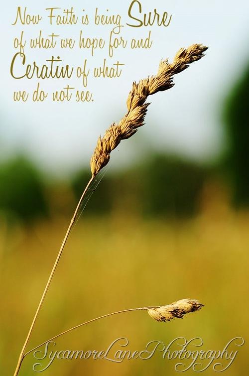 weed in field-w