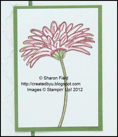 using the fine tip of the marker to color flower and stem