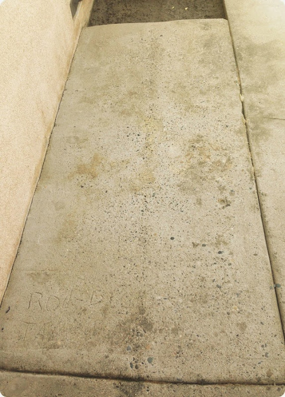 concrete after using 30 Seconds Cleaner to remove mold and algae