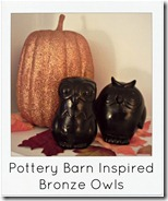 Pottery Barn Inspired Bronze Owls