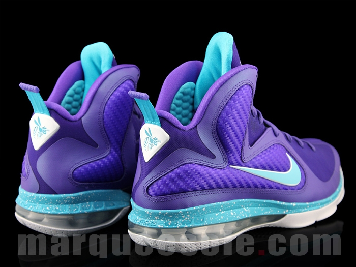 Nike LeBron Soldier 9 Summit Lake Hornets