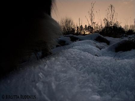 bjare_20120202_sunset