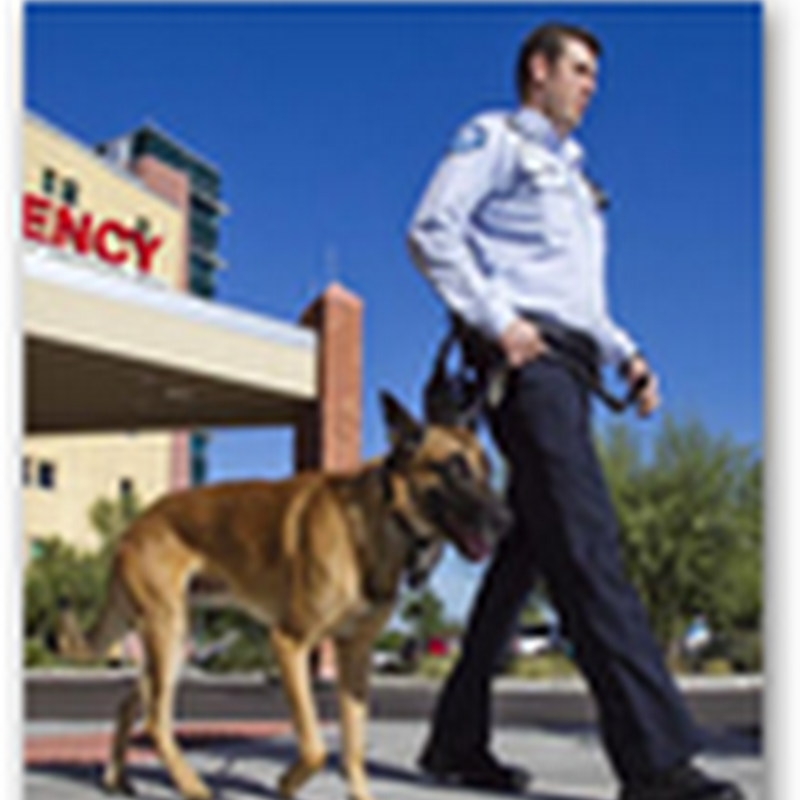 Banner Hospital in Phoenix Uses Dogs to Assist With Security