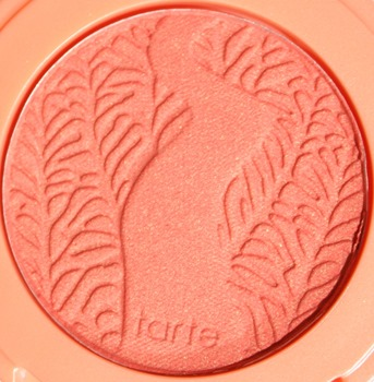 TreasuredAmazonianClay12HourBlushTarte5