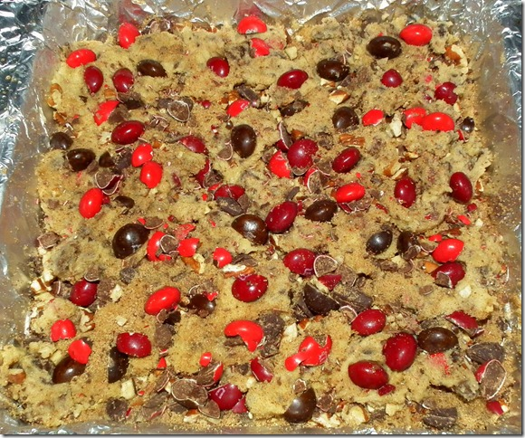 Unbaked Chocolate Cinnamon Blondies 12-14-11