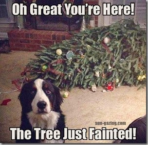 tree just fainted