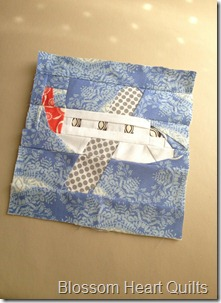 Alyce's plane
