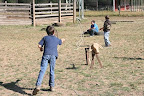 We got to practice roping, too - just like the real cowboys