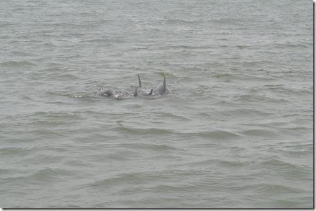 06-06-11 Tybee Beach 021