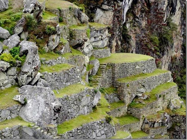 Machu_Picchu_DSC02219