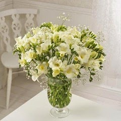 Sendabunch - Guernsey Flowers - 25 White
